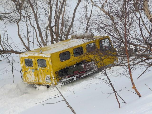 Желтый никогда не говорит - нет снега!