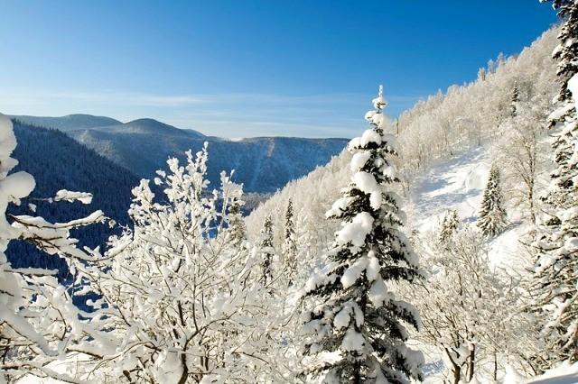 Что с хели-ски в Сибири