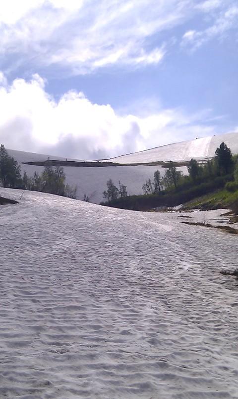 Самое-при-самое начало реки Правая Сорала. Виден трасса-летн